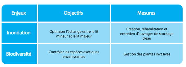 Tableau exemple enjeux PARIS